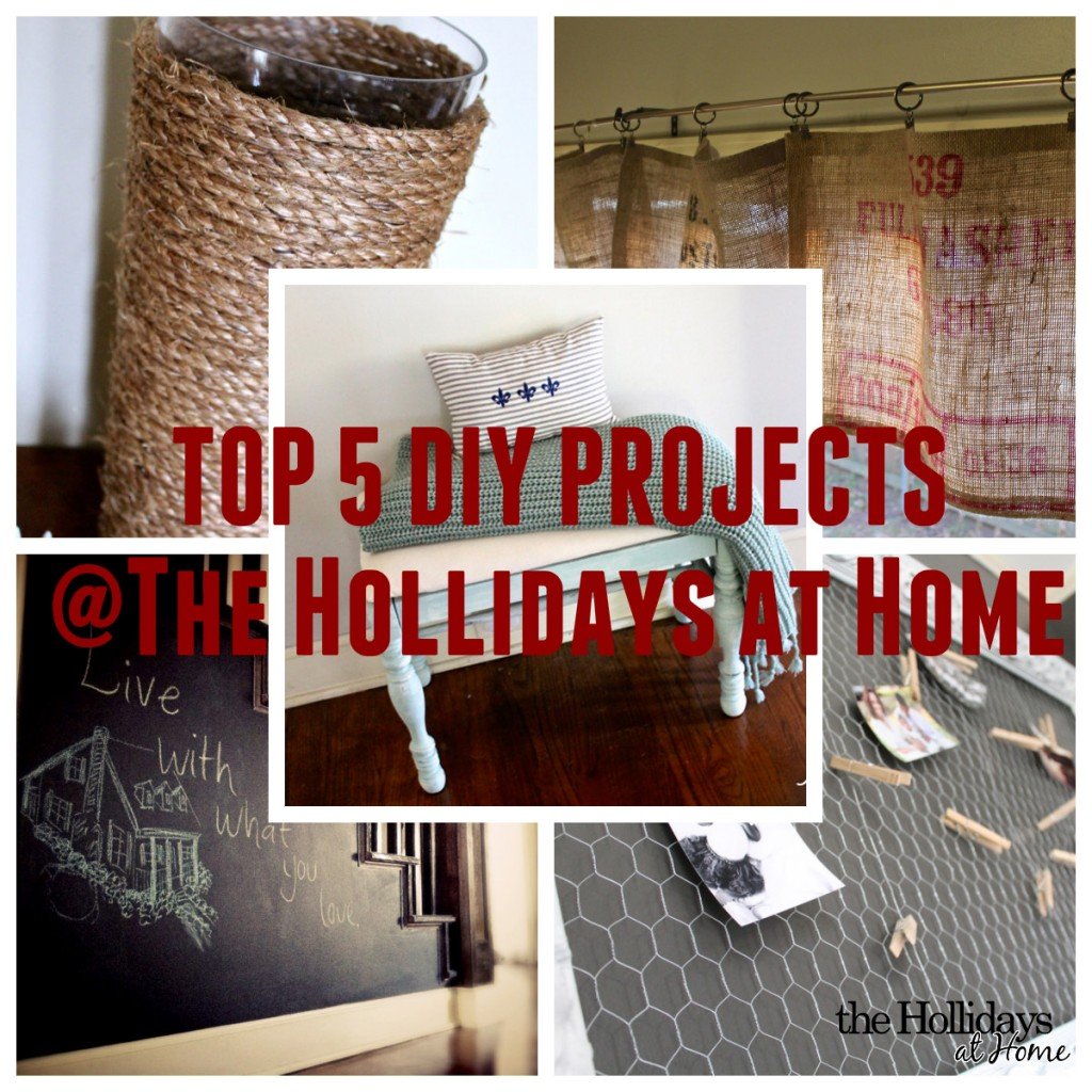 top5diyprojects