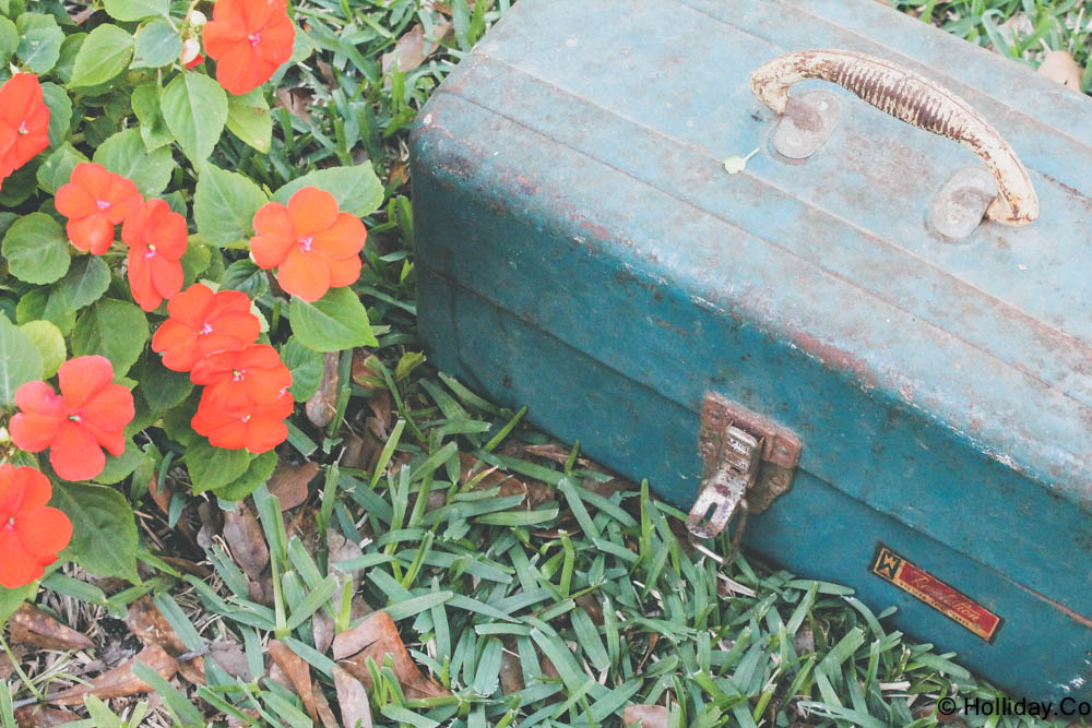 DIY Vintage Tackle Box Planter, vintage tackle box , tackle box, creative planter, vintage tackle box , tackle box, creative planter, DIY